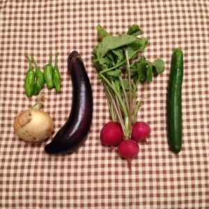 高千穂のお野菜
