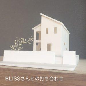 超狭小住宅 ハナヒヨ BLISS 戸建模型